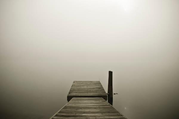 Une photo magnifique dans la tête d'un gastornis de l'océan et de la brume, sensation de solitude.