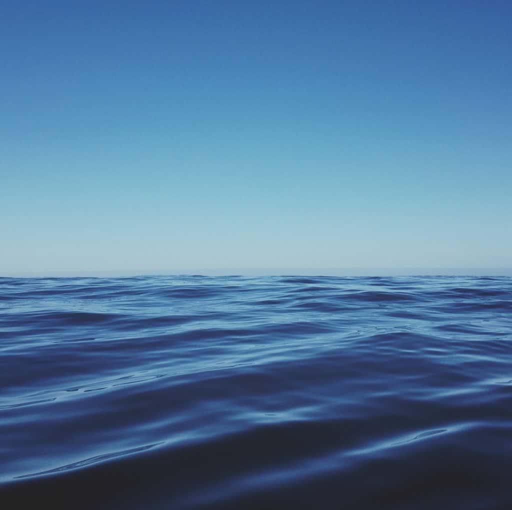Photo d'un océan sans requin blanc.
