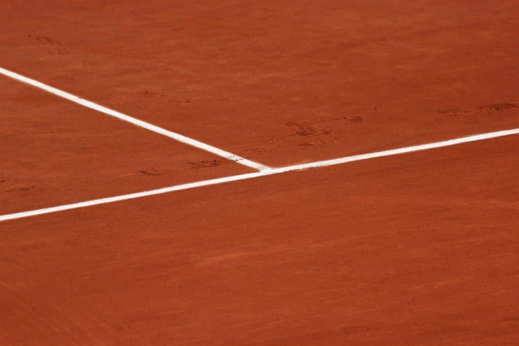 Zoopharmacognosie et automédication animale, exemple de l'argile et parallèle avec le tennis.