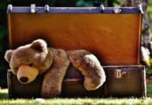 Photo d'une valise avec un animal qui pourrait être le plus grand animal du monde.